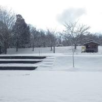 1月20日初雪