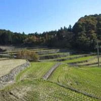 深野棚田の歴史・文化