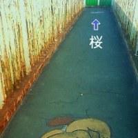 歩道橋FILE.206