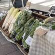 第19回無農薬農家の野菜の直売会「駅前みなはし横丁」開催☆