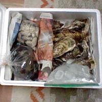 生牡蠣&しうり貝(ムール貝)を頂きました♪