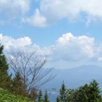 暑い中にも涼感を覚える今日の山歩き