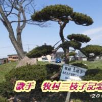 牧村三枝子記念樹・・