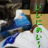 箱は・・誰の?