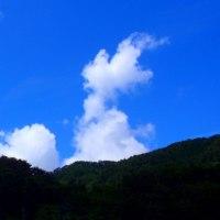 きょうは曇り空、あの悲しい事件から早一週間…?!