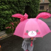 🍓雨だ〜💕