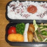 お弁当(H29.5.15~5.19)