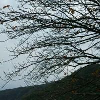 地震だ! 10月21日(金)曇り