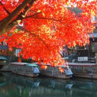 深まりゆく秋の宇治川にて・・・
