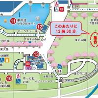 藤原先生の 全員集合!!(4月1日水曜) 万博公園に!