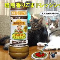 【#ピエトロ】#ドレッシング#新商品「#焙煎香りごま」で作るブォ~ノなレシピ大募集!!