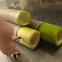アートな竹の子、、