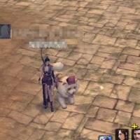 ブラウザ用MMO-RPG 三国志を抱く