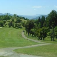 緑陰にゴルフの球の遊びけり