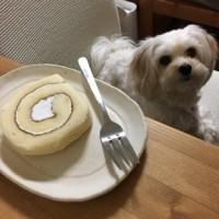 お誕生日おめでとう〜!
