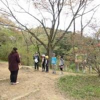 低学年(1年・2年・3年) 遠足 小峰公園  ~特集④~
