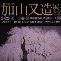 日本画を超える日本画? 生誕90年 加山又造展