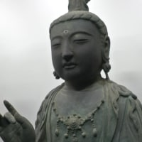 「サワラチャンの加計呂麻島日記-2017-01-30号」