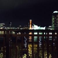 夜景を見ながら御飯なうザマス