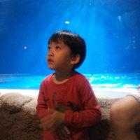 浅虫水族館。