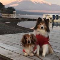 山中湖へ(2日目)