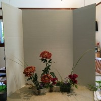 琳派調 菊2種 楓 ススキ