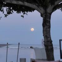 Moon Salutation 月礼拝