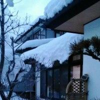 落雪注意!