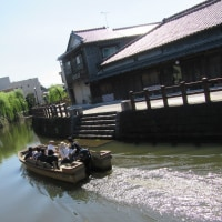 のんびり散歩!小江戸(水郷)の街に赤が映えていました!それって「きつね」ですか!それとも?