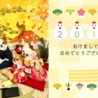 2017年の、年賀状とカレンダー☆