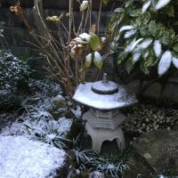戸外は雪、鏡開き、女子駅伝、イチゴ、