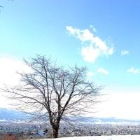青い世界。