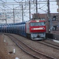 交直両用電気機関車 EH500-81【武蔵野線:新座駅】 2017.5.15(9)撮り鉄 車両鉄