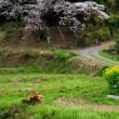 茨城自然写真の会 写真展