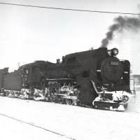 蒸気機関車 雪のD51貨物