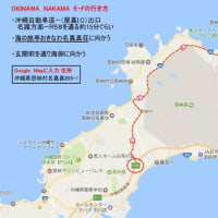 沖縄 日記 2017.2.8