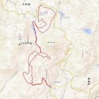 ニセコ連峰歩くスキー大会
