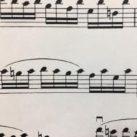 移弦とねこ♪