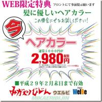 みかえりびじんWEB限定企画のお知らせ!!