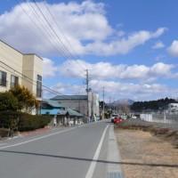 一関市千厩町千厩のキンセンカ(金盞花) 2017年3月11日(土)