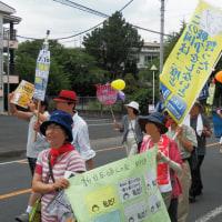 2016.6.12【戦争法廃止! 選挙に行こう! すぎと 町デモ2】レポート