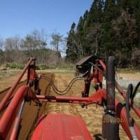 今年も、畑仕事の始まり