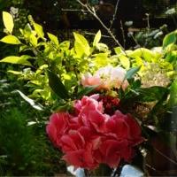 サプライズ cake & bouquet