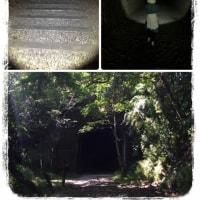 泣いた日と廃線ハイキング