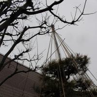 日本の礼儀 1