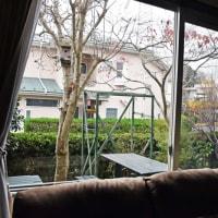 我が家の窓