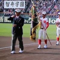 春はセンバツから――第89回選抜高校野球大会が開幕