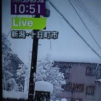各地で大雪が★