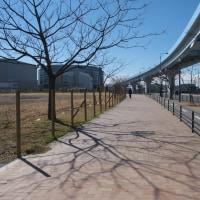 2月の豊洲:豊洲駅前交差点から豊洲六丁目(新豊洲地区)へ PART2