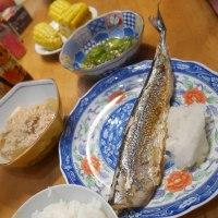 新秋刀魚。